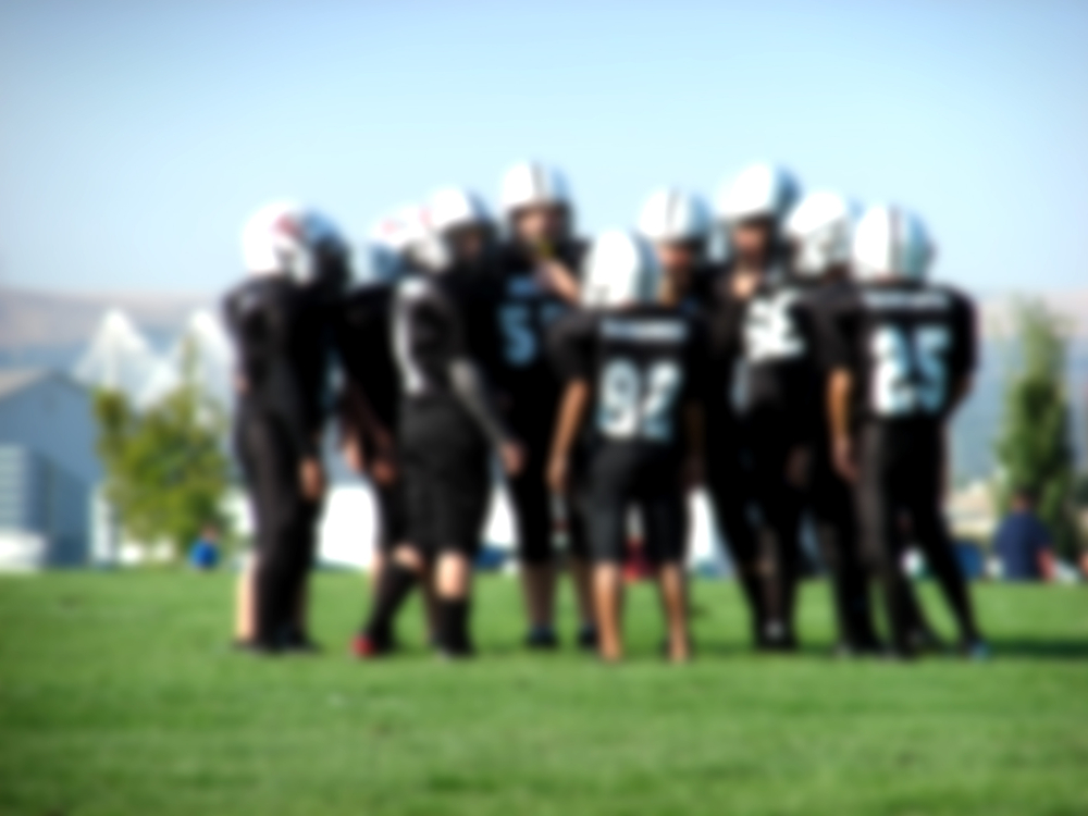 Protect Youth Sports with Background Checks